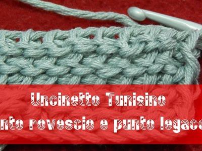 Uncinetto tunisino - Punto rovescio [reverse stitch] e punto legaccio [purl stitch]