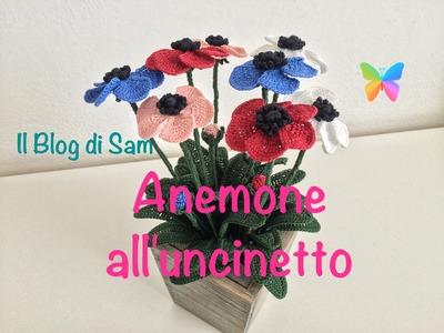 Spiegazione dell'Anemone all'uncinetto