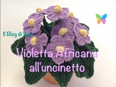 Spiegazione della Violetta Africana all'uncinetto