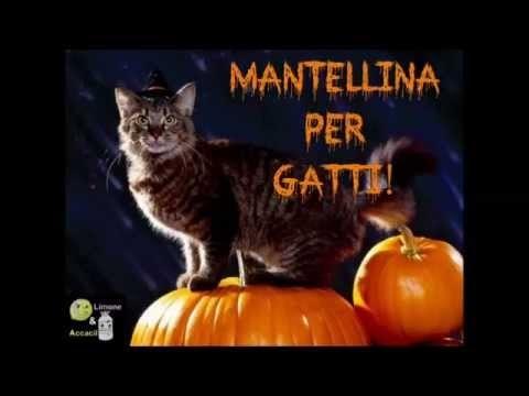 Pet Halloween | DIY Mantellina per Gatti