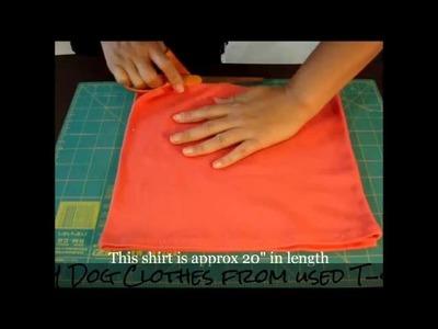 DIY: Louis Vuitton inspired T-shirt | Spring 2013 Fashion Trends | Easy tutorial ita.eng