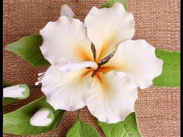 Hibiscus in pasta di zucchero,Gumpaste Flower  hib