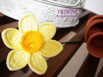 Tutorial Narciso 3d Crochet.Uncinetto