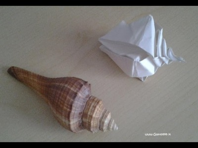 Origami Conchiglia Shell Conquille .  (Gatto999.it)