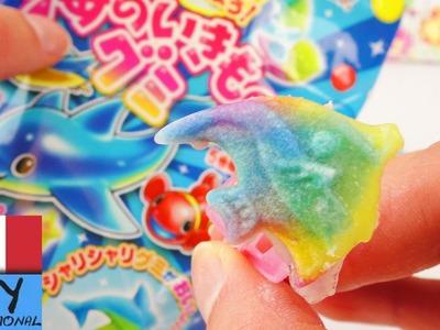 Popin 'Cookin' Candy Set giocattoli di gomma fai da te | Da Kracie | Pesci colorati in gomma