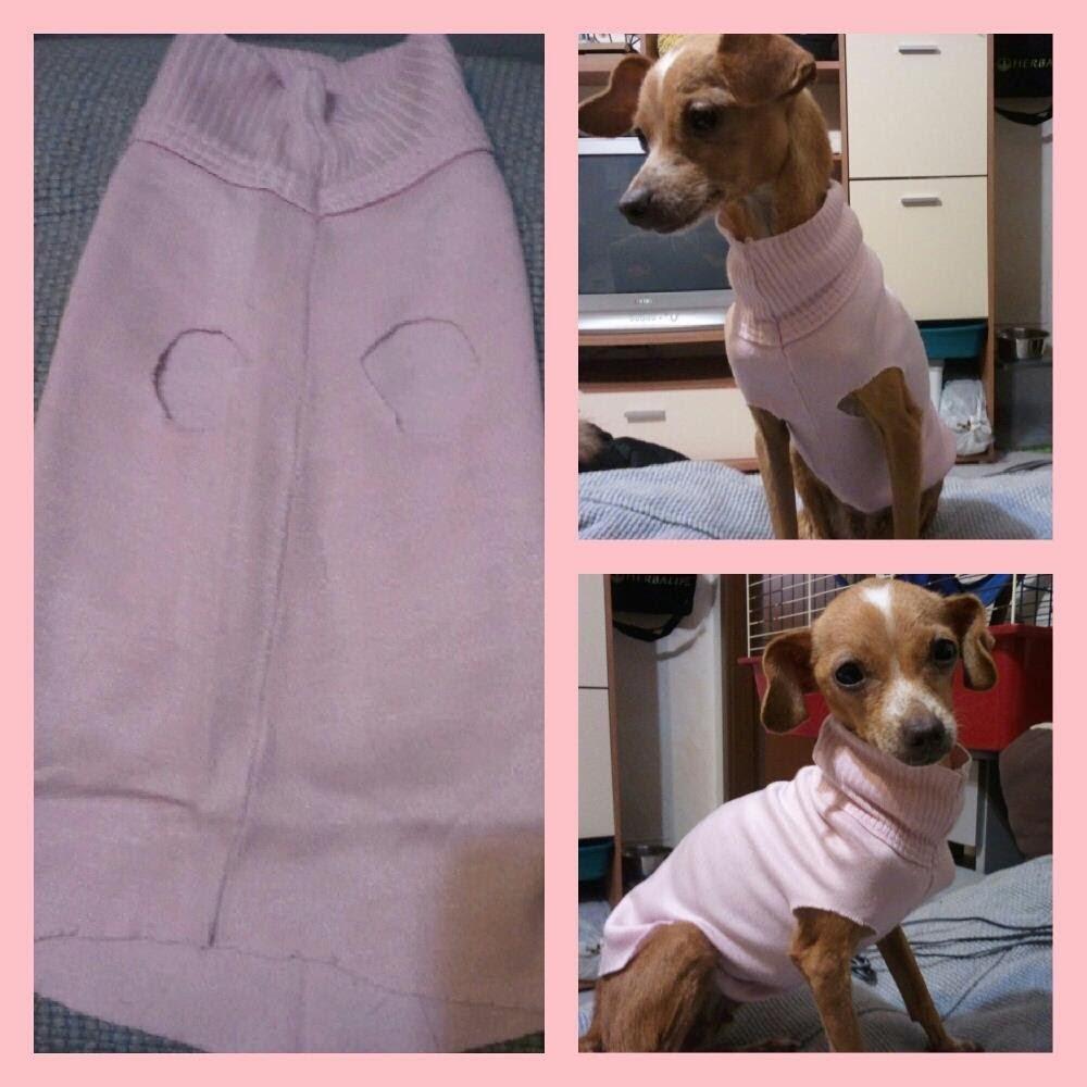 Maglioncini per cani fai da te diy dog clothes for Impermeabile per cani fai da te