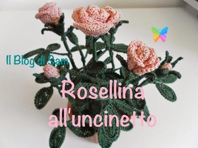 Spiegazione della Rosellina all'uncinetto